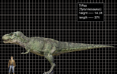 Image - T-Rex size.png - Jurassic Park wiki - Wikia