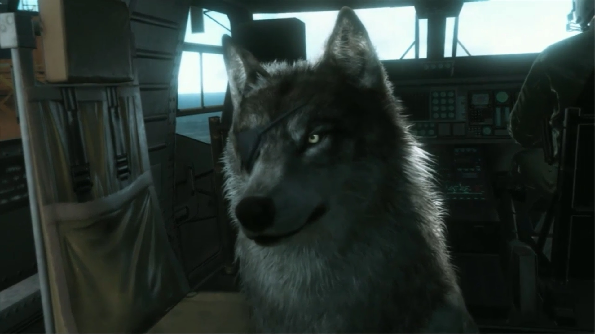 Metal Gear Solid  How To Pet Dog