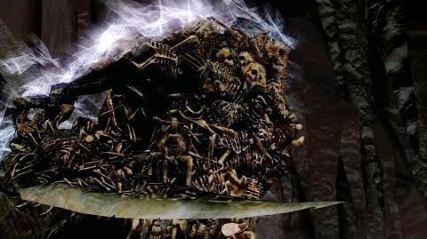 Члены ковенантов (Dark Souls)