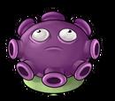 Stinkmorchel