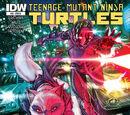 Teenage Mutant Ninja Turtles issue 40 (IDW)