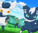 XY044: Splitting Heirs!