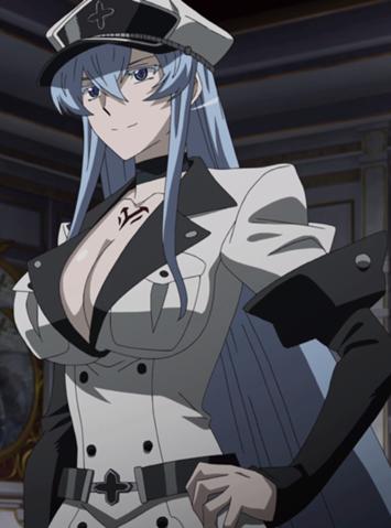 Esdeath, Akame ga kill | Menina anime, Anime masculino, Anime