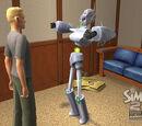 Obiekty wytwarzane przez simów