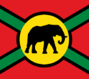 Flag of the Africa
