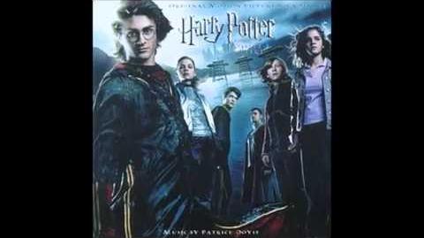 Wiki Harry Potter, L'encyclopédie