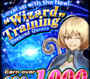 Wizard Training