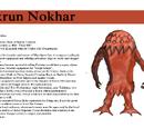 Akrun Nokhar