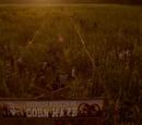 Przyjęcie w kukurydzianym labiryncie