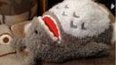 Totoro-snoring-plush.png