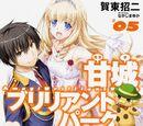 Amagi Brilliant Park Light Novel Volume 5