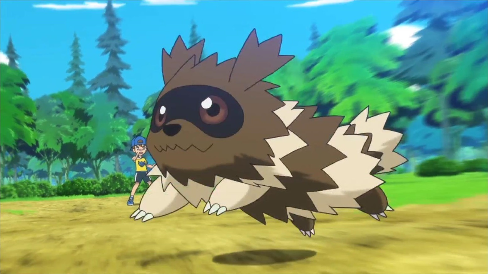 Youngster Zigzagoon Png