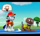 Zuma/Gallery/Pups Save a Basketball Game