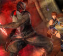 Dead or Alive 5 Last Round command lists