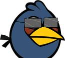 Incognito Bird