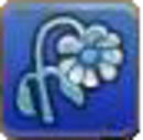 Sad Flower.jpg