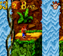 Livelli di Crash Bandicoot XS
