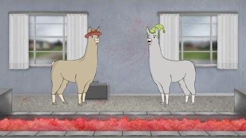Llama with hats 6