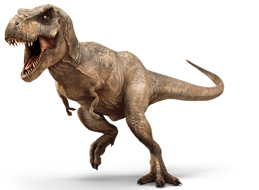 Description and Statistics  T Rex