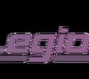 Legionnaire International