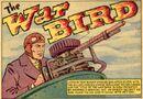 War Bird 0001.jpg