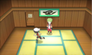 Petalburg City Gym ORAS.png