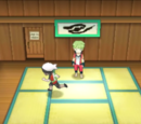 Petalburg City Gym