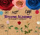 Blossom Academy