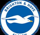 Brighton & Hove Albion (2015-16 home)