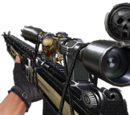 Weapons with usable scopes