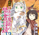 Shinyaku Toaru Majutsu no Index Light Novel Volume 12