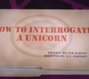 How to Interrogate a Unicorn
