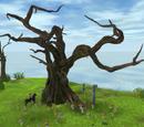 Urträd