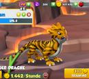 Tigerdrache