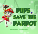 Pups Save the Parrot