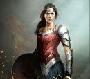 DC Superheroes: Dawn of Injustice Brawl Tournament Contestants