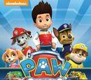 Paw Patrol videography