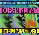 The Big Bang Concert