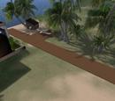 Palms End Airstrip