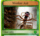 Worker Ant