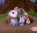 The Bunnies/Trivia