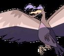 Большая птица