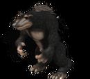 Beruang Rambai