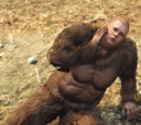 Sasquatch Roleplayer