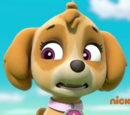 Skye/Gallery/Pups Save an Adventure