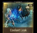 Coolant Leak