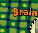 Brain Sees Stars