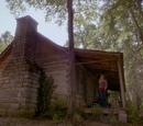 Davina's Family Cabin
