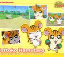 Latin Hamsters