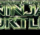 Wojownicze Żółwie Ninja (film 2014)